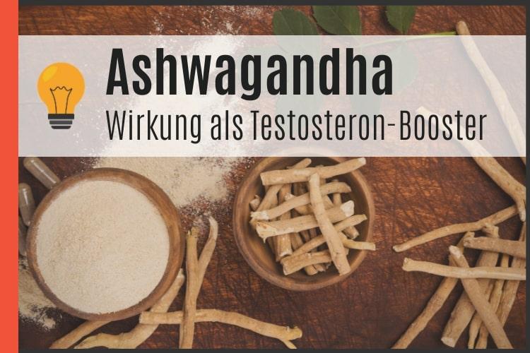 Ashwagandha als Testosteron-Booster
