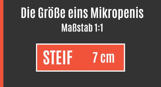 Durchschnittliche Länge eines Mikropenis