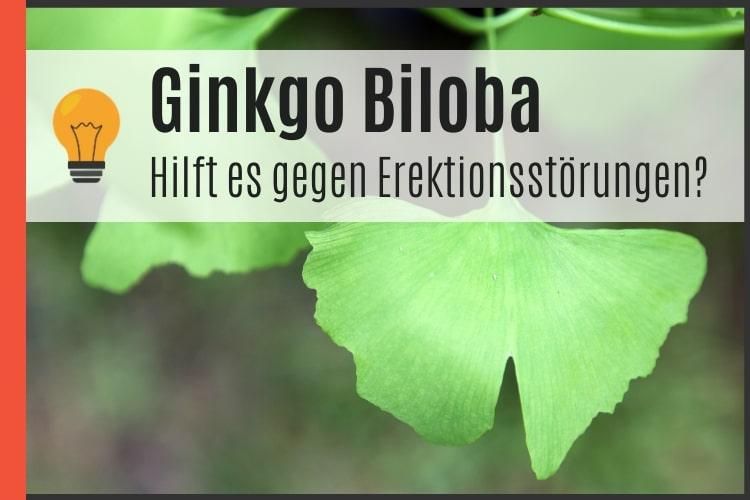Ginkgo Biloba gegen Erektionsstörungen