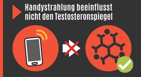 Handystrahlung beeinflusst nicht Testosteronspiegel
