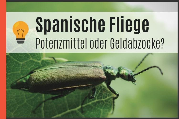 Spanische Fliege - Potenzmittel oder Geldverschwendung