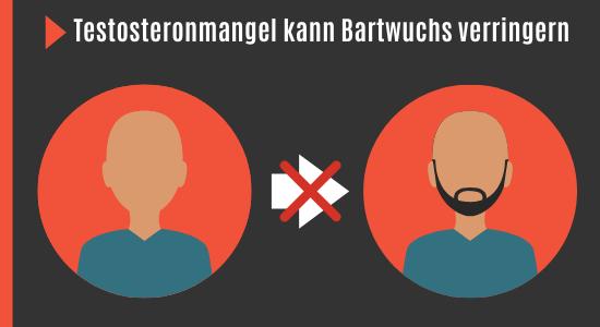 Testosteron und Bartwuchs