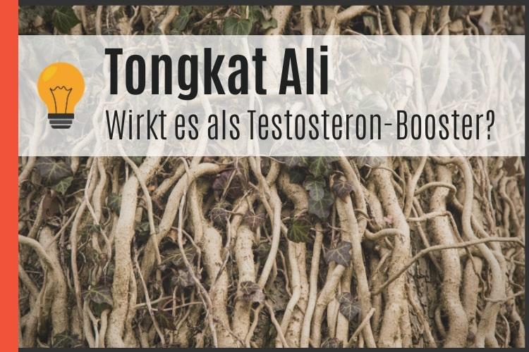 Tongkat Ali als Testosteron-Booster