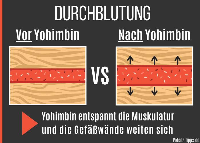 Yohimbin gegen Erektionsprobleme mit erektiler Dysfunktion