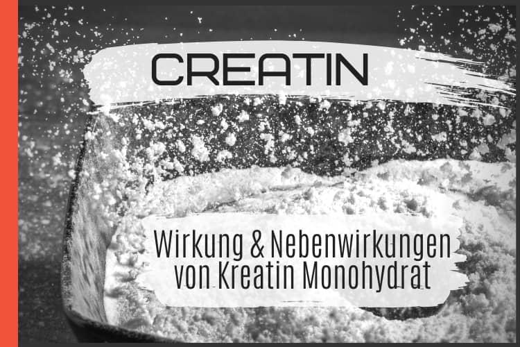 Creatin - Wirkung & Nebenwirkungen von Kreatin Monohydrat