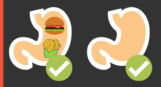 Einnahme von Creatin auf leeren und vollen Magen