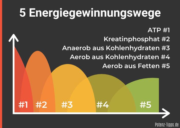 Energiegewinnungswege Sport