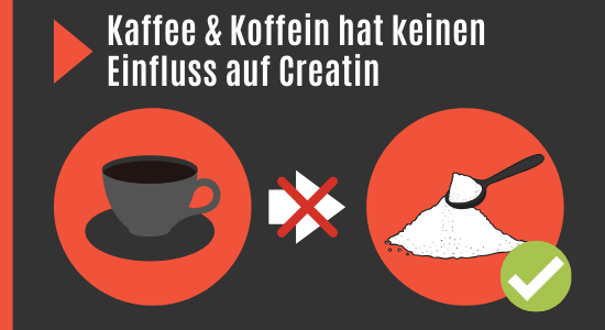 Kaffee und Koffein und Creatin