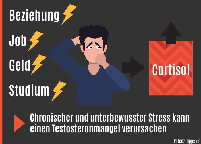 Stress reduziert den Testosteronspiegel
