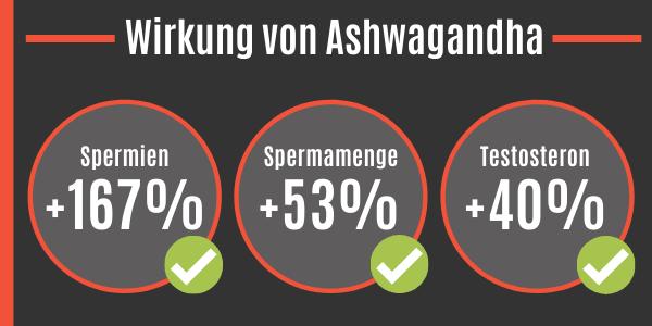 Wirkung von Ashwagandha