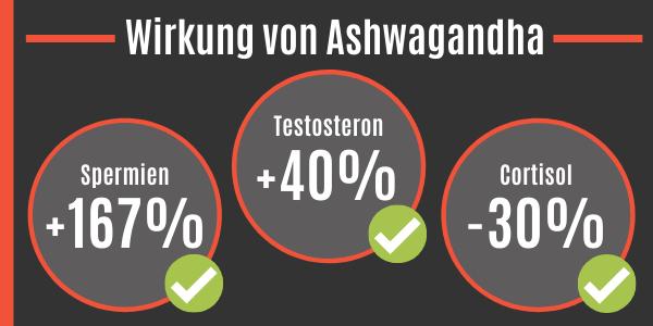 Wirkung von Ashwagandha auf den Testosteronspiegel
