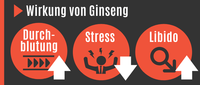 Wirkung von Ginseng
