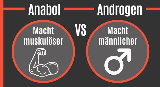 Anabol vs. Androgen