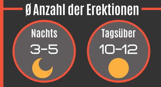 Anzahl der Erektionen pro Tag