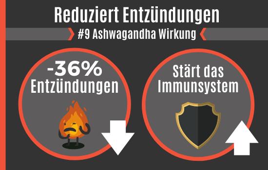 Ashwagandha Wirkung - Reduziert Entzündungen