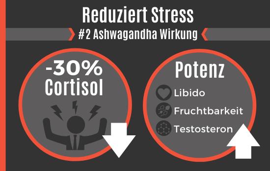 Ashwagandha Wirkung - Reduziert Stress