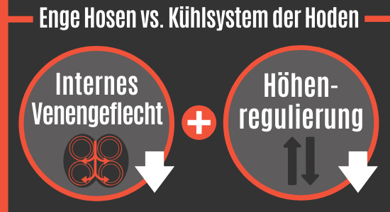 Enge Hosen vs. Kühlsystem der Hoden