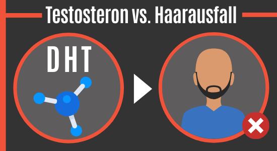 Testosteron (DHT) vs. Haarausfall
