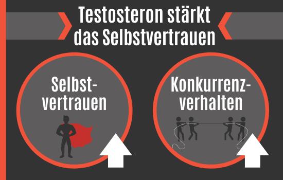 Testosteron stärkt das Selbstvertrauen