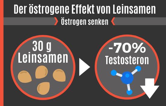 Der östrogene Effekt von Leinsamen