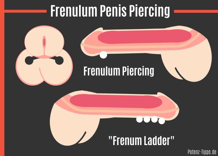 Frenulum Penis Piercing