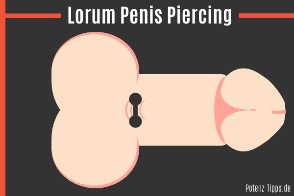 Lorum Penis Piercing