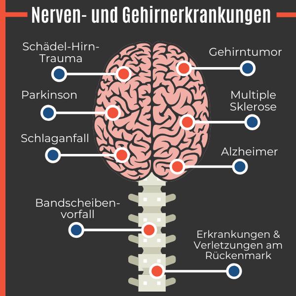 Nerven- und Gehirnerkrankungen als Ursache einer Impotenz