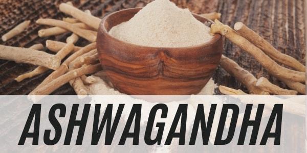 Ashwagandha Pflanze