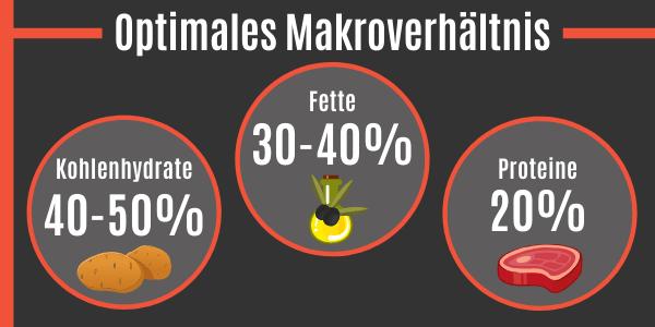 Optimales Makroverhältnis für maximale Testosteronwerte