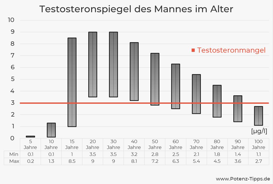 Schaubild zum Testosteronspiegel des Mannes im Alter