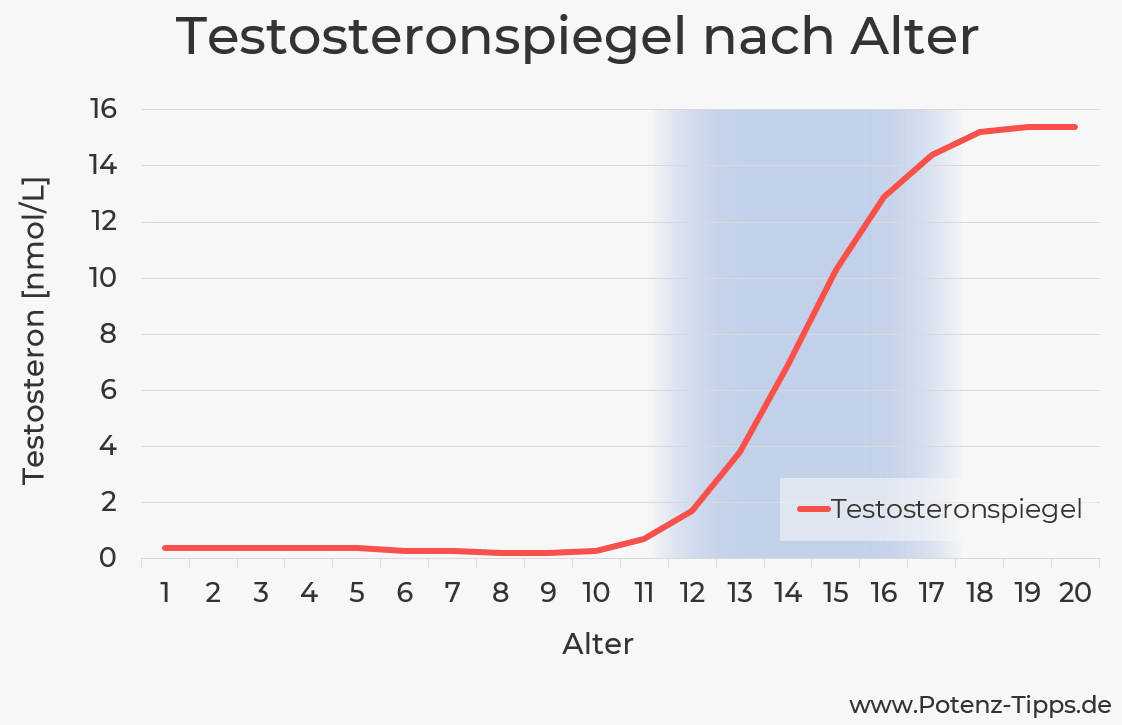 Testosteronspiegel nach Alter