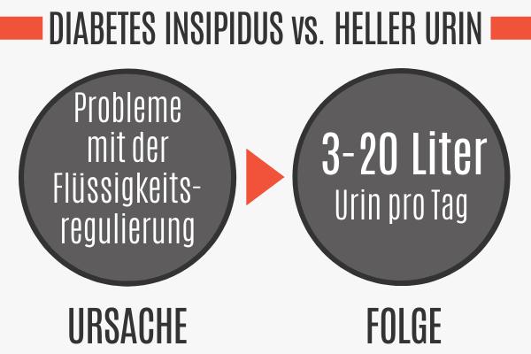 Heller Urin durch Diabetes Insipidus