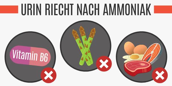 Lebensmittel lassen Urin nach Ammoniak riechen