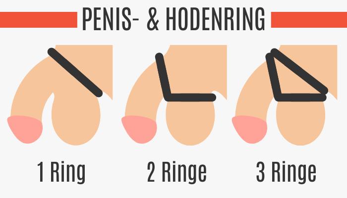 Penis- & Hodenring