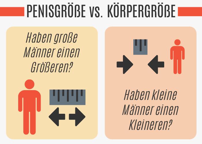Penisgröße vs. Körpergröße