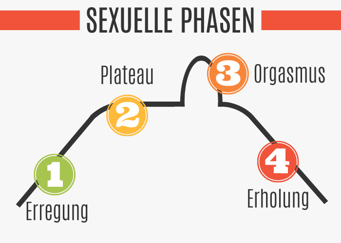 Sexuelle Phasen beim Edging