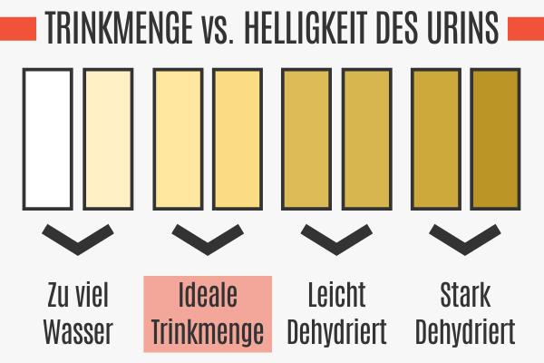 Trinkmenge vs. Helligkeit des Urins