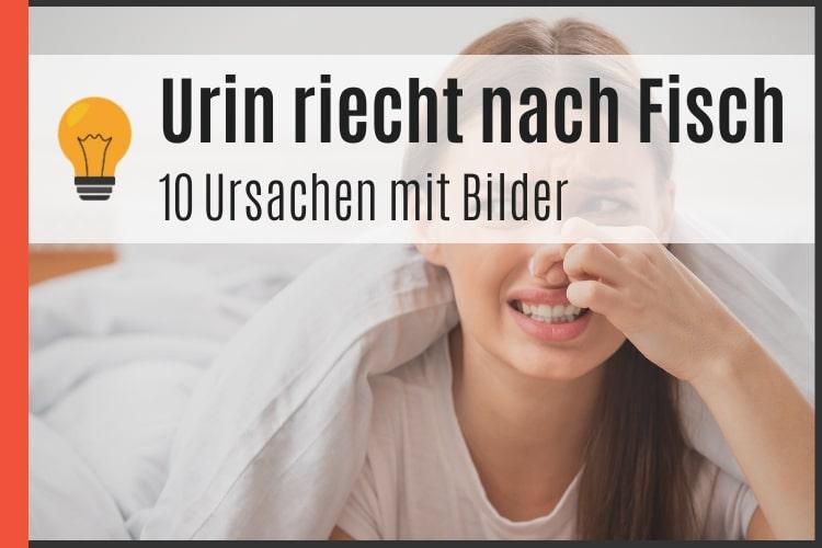 Urin riecht nach Fisch - Ursachen mit Bilder