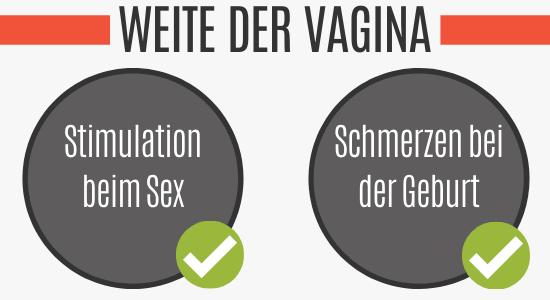 Weite vagina