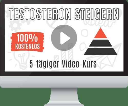 Video-Kurs zur Steigerung des Testosteronspiegels