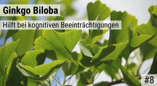 Ginkgo Biloba hilft bei kognitiven Beeinträchtigungen