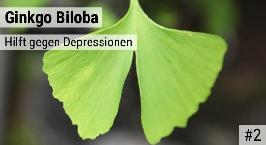 Ginkgo Biloba hilft gegen Depressionen