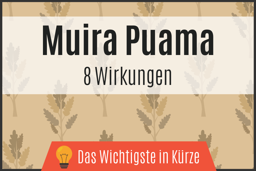 Muira Puama - 8 Wirkungen