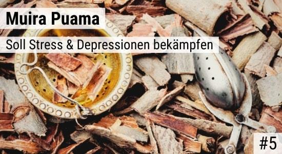 Muira Puama soll Stress & Depressionen bekämpfen