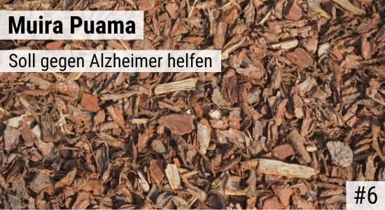 Muira Puama soll gegen Alzheimer helfen