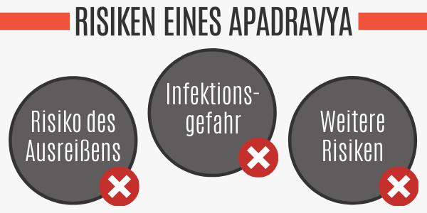 Risiken eines Apadravya