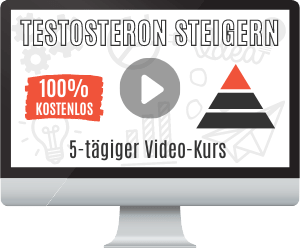 Testosteron Video-Kurs